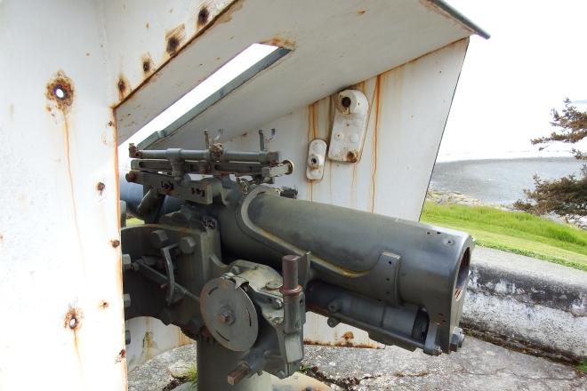 Fort Rodd 056